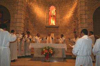 Actividades con sacerdotes diocesanos
