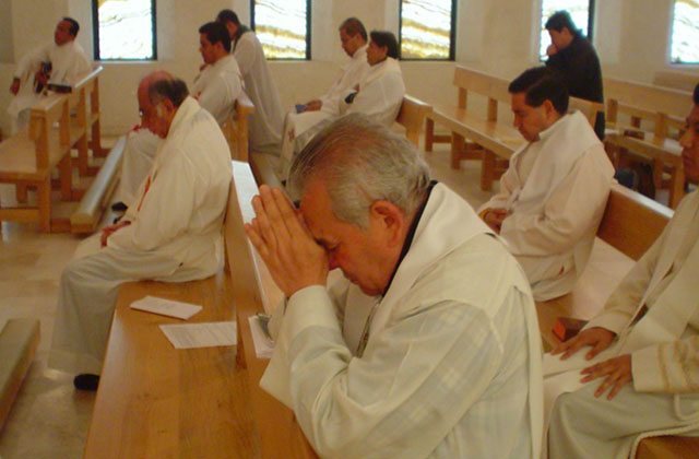 Ejercicios espirituales para sacerdotes diocesanos 2012.