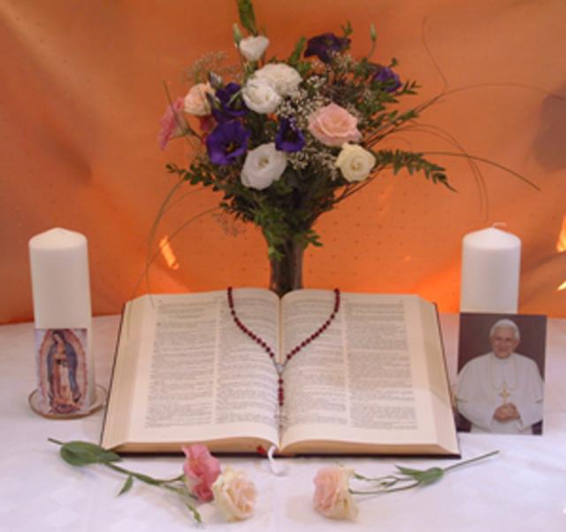 Biblia Peregrina