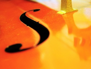 cello shot