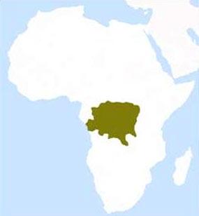 Ubicación de la República del Congo en el continente africano.